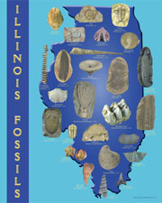Illinois Fossils
