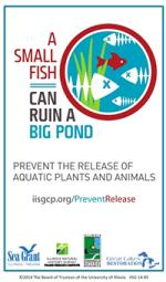 IISG-SmallFishCanRuinaBigPond-Sticker.JPG