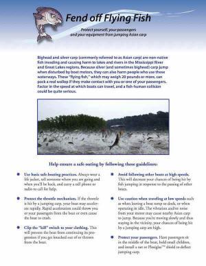 IISG-FendOffFlyingFish-FactSheet.jpg