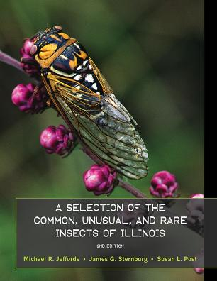 IllinoisInsectsBooklet.jpg