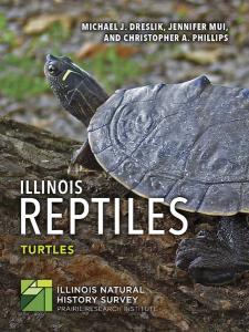 ReptileITurtles.jpg
